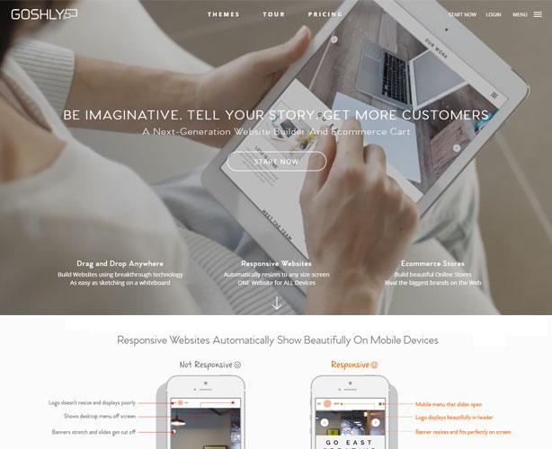 ASP.NET Web Development for California Website Builder Company