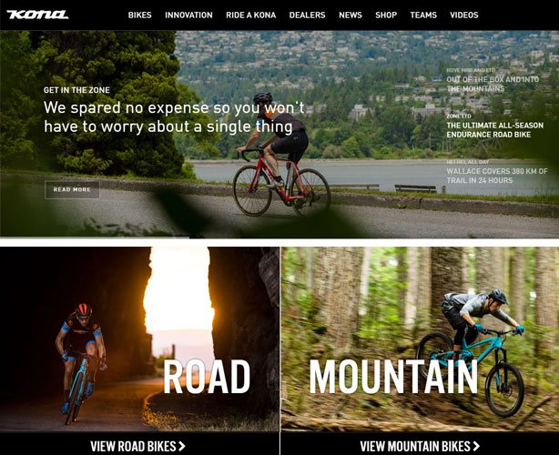 ASP.NET Website Development using WordPress for USA Bicycle Company