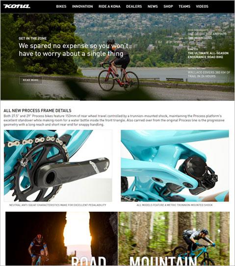 ASP.NET Website Development using WordPress for USA Bicycle Company