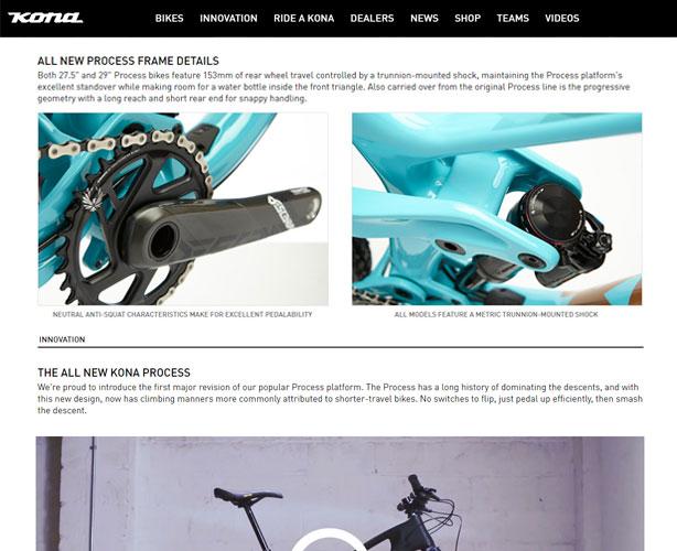 WordPress for USA Bicycle Company