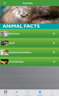 Mobile App for an Animal Zoo in Seattle Washington